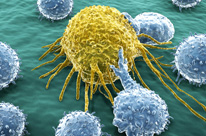 cancer immunotherapy cells 206x136